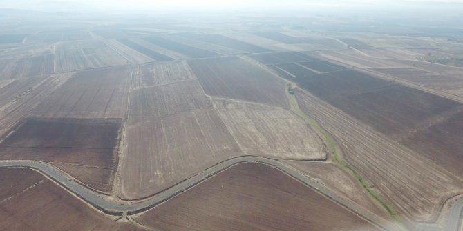 Kahramanmaraş'ta bu yıl 4 bin 761 hektarlık arazi tapulaştı