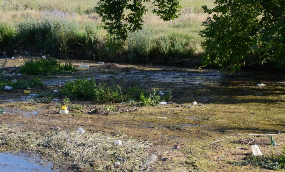 Ceyhan Nehri temizleniyor 4