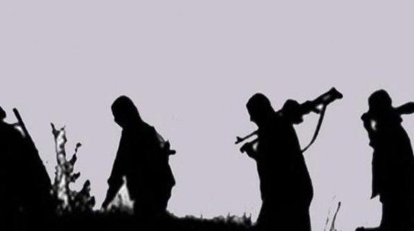 Kırsal alan ile irtibatlı 5 PKK'lı yakalandı