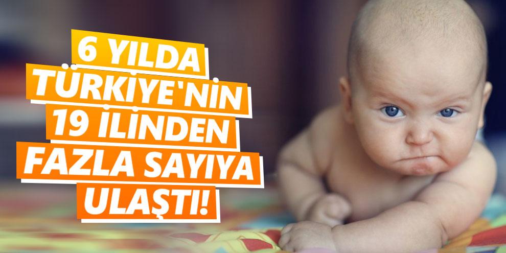 6 yılda Türkiye'nin 19 ilinden fazla sayıya ulaştı!