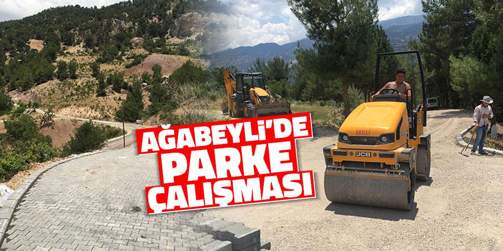 Ağabeyli'de parke çalışması