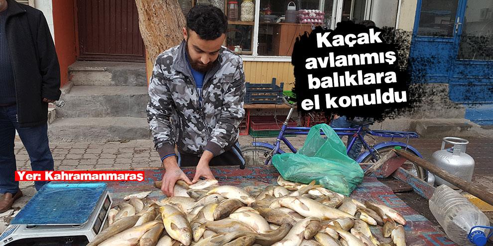 Seyyar tezgahındaki kaçak avlanmış balıklara el konuldu