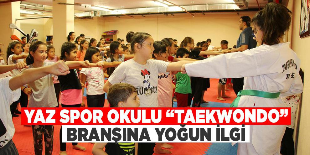 """Yaz Spor Okulu """"Taekwondo"""" branşına yoğun ilgi"""