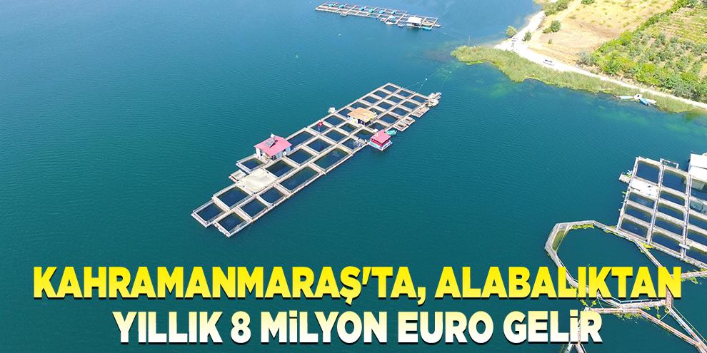 Denize kıyısı olmayan Kahramanmaraş'ta, alabalıktan yıllık 8 milyon Euro gelir
