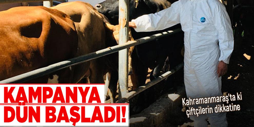 Kahramanmaraş'ta ki çiftçilerin dikkatine! Kampanya dün başladı