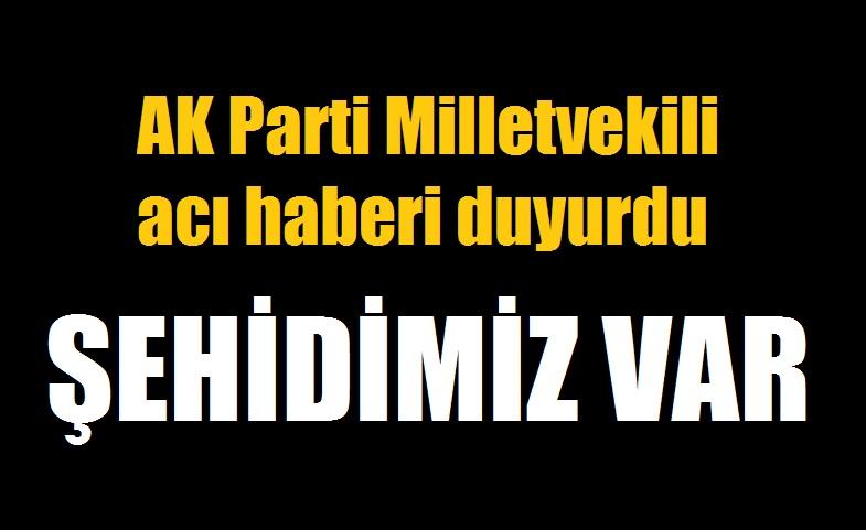 Barış Pınarı Harekatı'ndan acı haber: 1 asker şehit oldu
