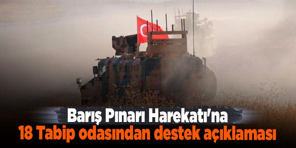Barış Pınarı Harekatı'na 18 Tabip odasından destek açıklaması