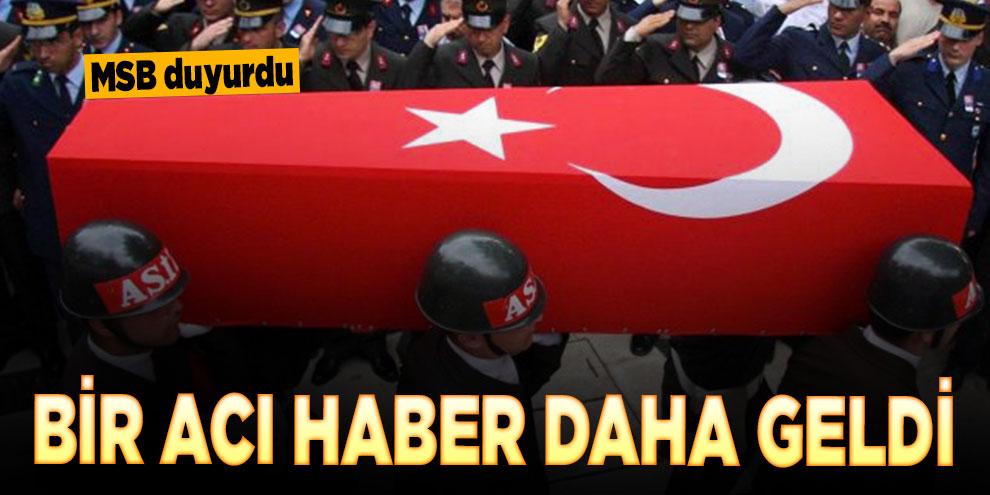 Barış Pınarı Harekatı'nda 1 asker şehit