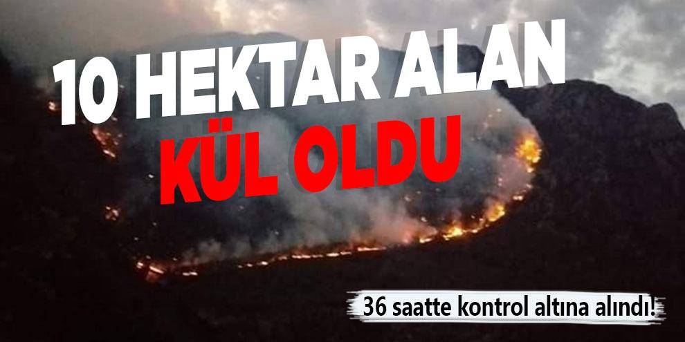 Kahramanmaraş'ta 10 hektar alan kül oldu