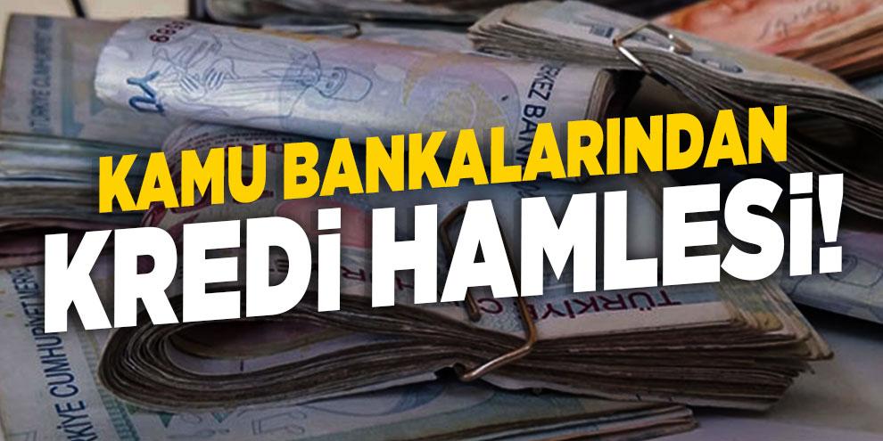Kamu bankalarından kredi hamlesi!