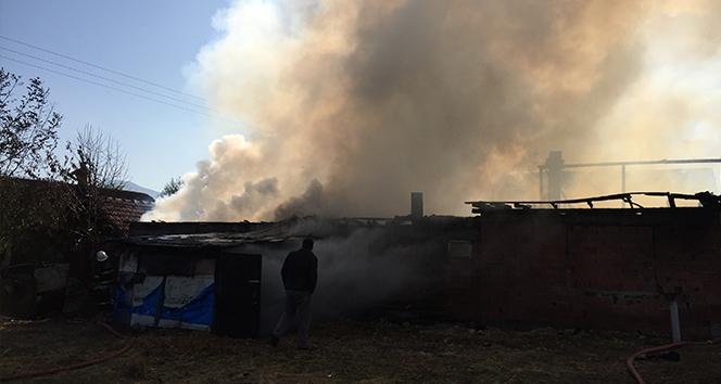 Bolu'da, aynı aileye ait 3 ev alev alev yandı