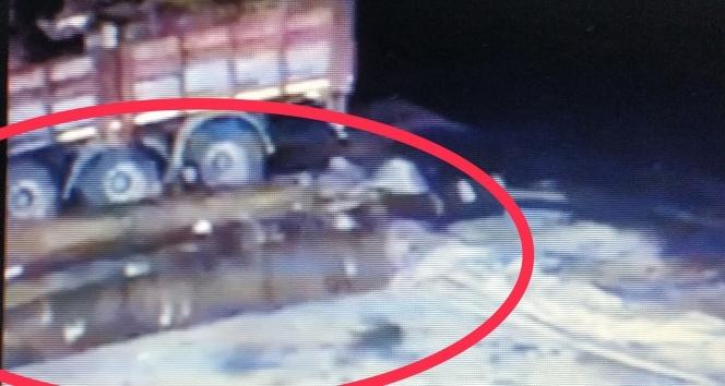 Üzerine kamyondan tomruk düşen şoför hayatını kaybetti