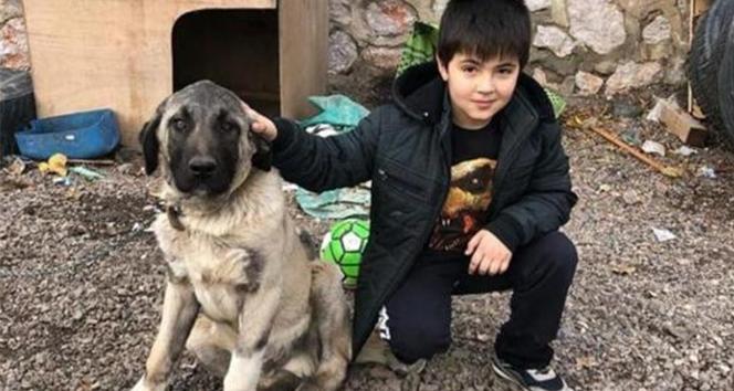 Top oynarken fenalaşan 7 yaşındaki çocuk hayatını kaybetti