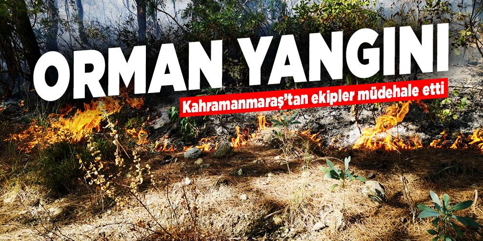Orman yangını! Kahramanmaraş'tan ekipler müdahale etti