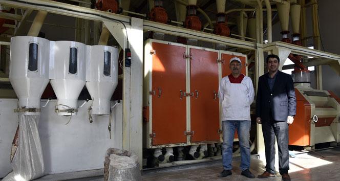 Türkiye'nin ilk karabuğday un ve bulgur tesisi