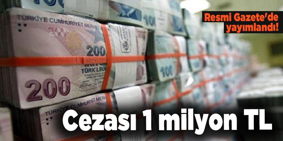 Resmi Gazete'de yayımlandı! Cezası 1 milyon TL