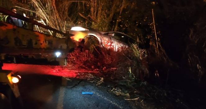 Samandağ'da otomobil bahçeye uçtu