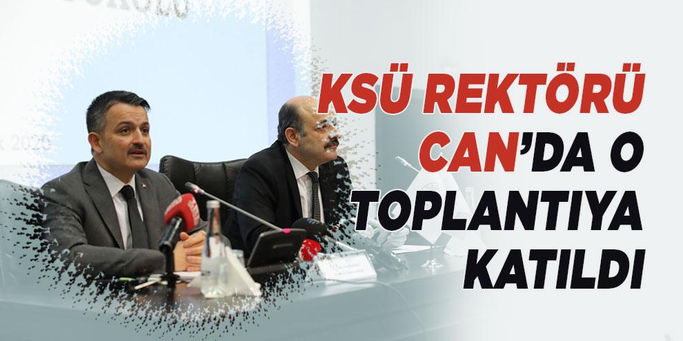 O toplantıya KSÜ Rektörü Can'da katıldı