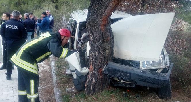 Kontrolden çıkan araç ağaca çarptı: 1 ölü, 1 yaralı