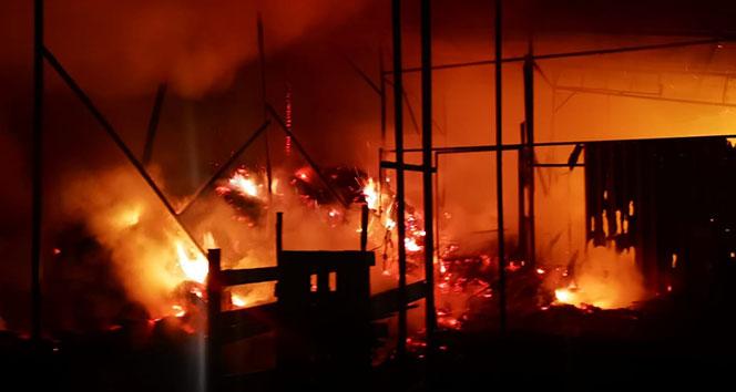 Bilecik'te çıkan yangında çok sayıda hayvan telef oldu
