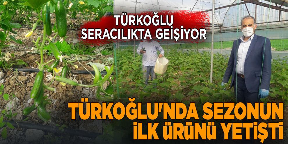 Türkoğlu'nda sezonun ilk ürünü yetişti