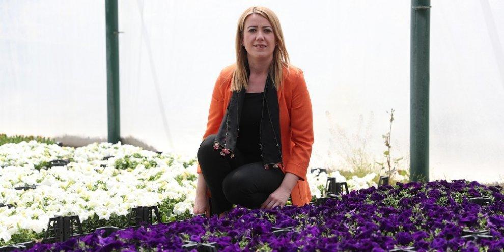 Yaklaşık 200 bin çiçeği kendileri ürettiler
