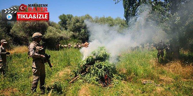 Diyarbakır'da dev uyuşturucu operasyonu: 858 ton esrara denk geliyor