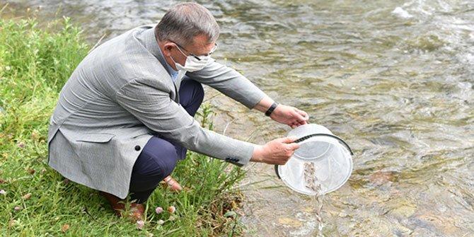 Göksun'da Törbüzek Çayı'na 10 Bin Yavru Balık Bırakıldı