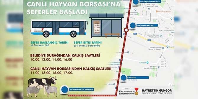 Kahramanmaraş'ta canlı Hayvan Borsası'na otobüs seferleri başladı