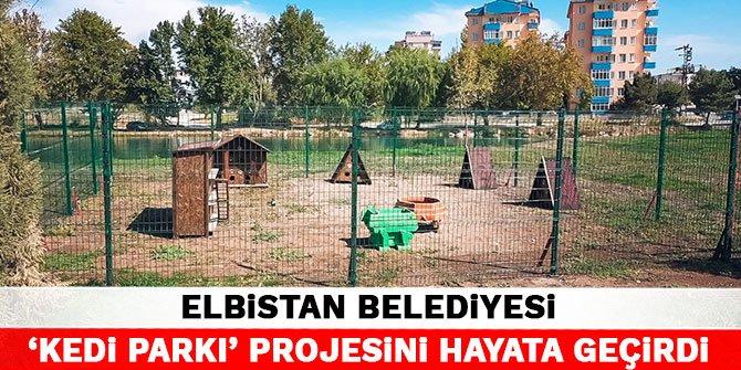 Elbistan Belediyesi, 'kedi parkı' projesini hayata geçirdi