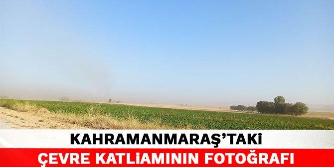 Kahramanmaraş'taki çevre katliamının fotoğrafı