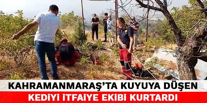 Kahramanmaraş'ta kuyuya düşen kediyi itfaiye ekibi kurtardı