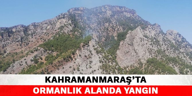 Kahramanmaraş'ta ormanlık alanda yangın