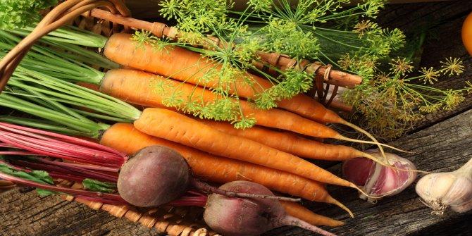 Kök sebzelerin faydaları nelerdir?