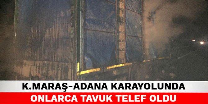 Kahramanmaraş-Adana karayolunda onlarca tavuk telef oldu