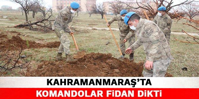 Kahramanmaraş'ta komandolar fidan dikti