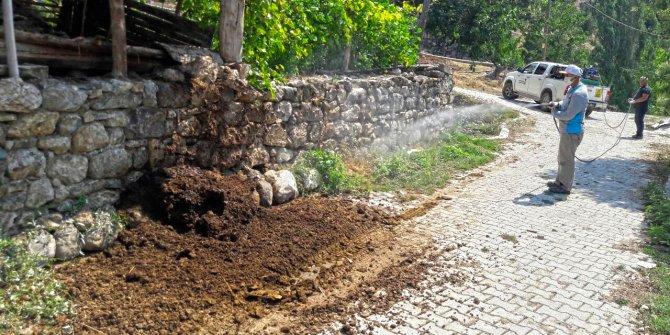 Kahramanmaraş'ta zararlılarla mücadele çalışmaları aralıksız sürüyor