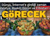 Dünya, İnternet'e girdiği zaman Malatya, Baskil, Gürün ve Elbistan'ı görecek...