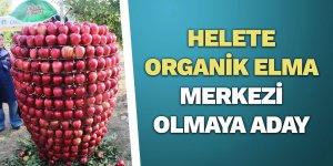 Helete organik elma merkezi olmaya aday