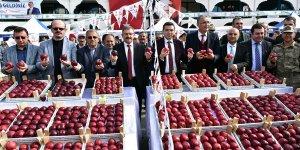 Göksun'da 6. Elma Festivali düzenlendi