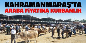 Kahramanmaraş'ta araba fiyatına kurbanlık