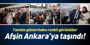 Afşin Ankara'ya taşındı! Tanıtım günlerinden renkli görüntüler