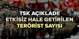 TSK açıkladı! Etkisiz hale getirilen terörist sayısı