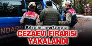 Cezaevi firarisi, jandarmanın takibi sonucunda yakalandı