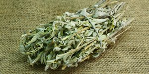 Ada çayı'ıun faydaları, Ada çayı nedir, Ada çayı nasıl tüketilmeli