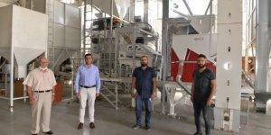 Kahramanmaraş Elbistan'dan 40 ülkeye ay çekirdeği ihracatı!