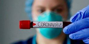 Koronavirüse karşı geliştirilen ilk aşı tescillendi