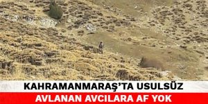Kahramanmaraş'ta usulsüz avlanan avcılara af yok