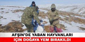 Kahramanmaraş'ta yaban hayvanları için doğaya yem bırakıldı