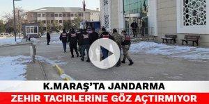 Kahramanmaraş'ta jandarma zehir tacirlerine göz açtırmıyor